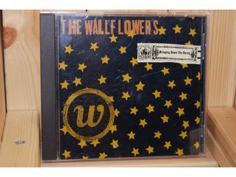 Cd The Wallflowers - Bringing down the horse , Bob dylans son