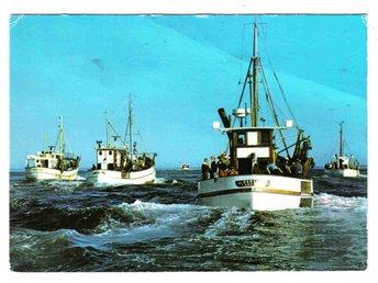 Fiskeflottan på väg ut - Segeltorp - Fiskeflottan på väg ut - Segeltorp