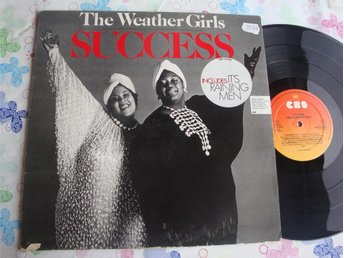 WEATHER GIRLS THE - SUCCESS LP 1983