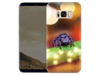 Samsung Galaxy S8 Plus Skal Friendly Spider