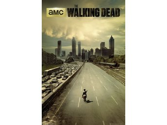 The Walking Dead -  Dead city