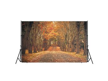7x5ft Autumn Forest Background Photography Backdrop Studi...