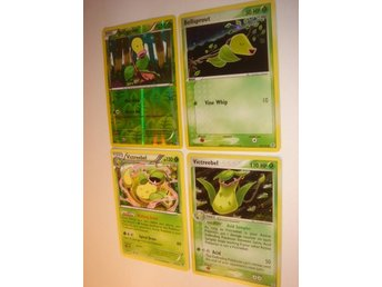 VICTREEBEL BELLSPROUT  4 st NYA  RARE  HOLO  FOIL  ÄLDRE mm.