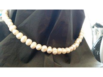 pärlhalsband odlade pärlor pris