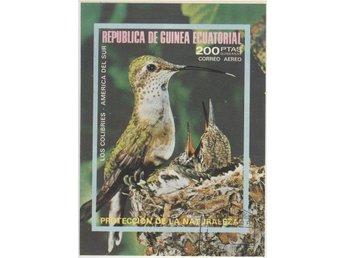 Ekvatorialguinea - Gislaved - Ekvatorialguinea - Gislaved
