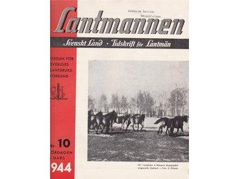 Lantmannen 1944-10 Wången Wångens Hingstuppfödning Avel - Järpås - Lantmannen 1944-10 Wången Wångens Hingstuppfödning Avel - Järpås