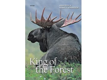 King of the forest, Anna Roos, Kenneth Johansson (Eng)