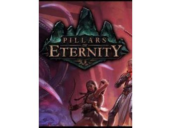Pillars of Eternity - Hero Edition - PC / Digitalkod