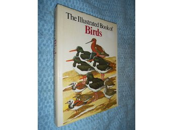The Illustrated Book Of Birds