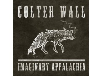 Wall Colter: Imaginary Appalachia (Vinyl LP + Download)