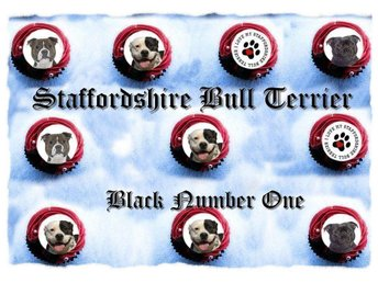 Staffordshire Bull Terrier - Tårtoblater - Tårtbild - Cupcake / Muffin toppers