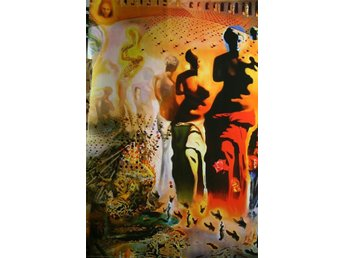 Poster / Salvador Dali / The hallucinogenic Toreador
