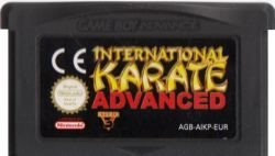 GBA - International Karate Advanced (Beg)