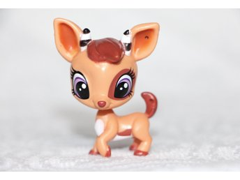 Littlest Pet Shop, Petshop, Pet shops, Petshops   (364448415