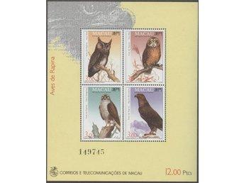 Fåglar - Gislaved - Fåglar - Gislaved