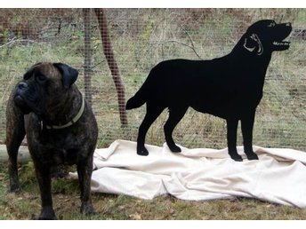 Labrador - smidesskylt i naturlig storlek, svart, ca 90 cm bred, 56 cm mankhöjd. - Storvreta - Labrador - smidesskylt i naturlig storlek, svart, ca 90 cm bred, 56 cm mankhöjd. - Storvreta
