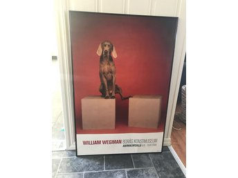 William Wegman Affisch