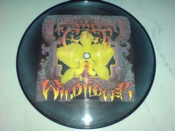 The Cult: Wild flower -  Pic´´7