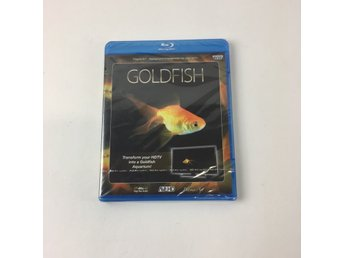 American Outpost, Blu-ray Film, Goldfish