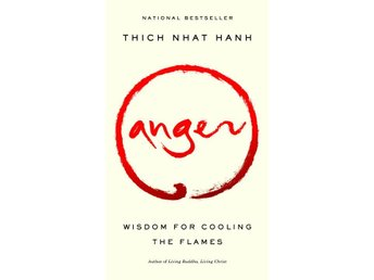 Anger: Wisdom For Cooling The Flames (Q) 9781573229371