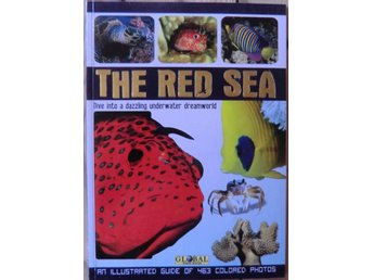 The Red Sea: Dive into a dazzling underwater dreamworld