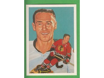1983 Hall of fame #191 Pierre Pilote