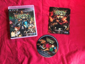 DRAGONS CROWN PS3 PLAYSTATION 3 FINT SKICK