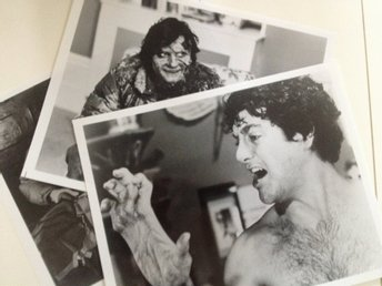 An American Werewolf in London (1981) 3st Orginal Foton 26x20 cm