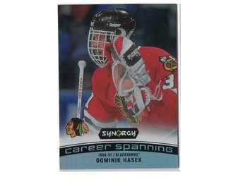 17-18 Upper Deck Synergy Career Spanning Dominik Hasek