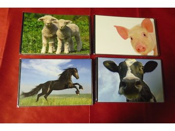Mini  Album, 10x15, album, mini, 40 bilder, animal