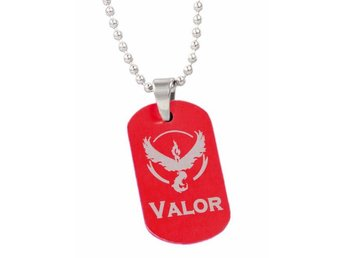 Team Valor Dog Tag Pokemon Go anime