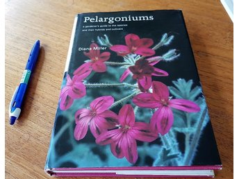 (Pelargoner) DIANA MILLER: Pelargoniums - gardener's guide to the species - 175s