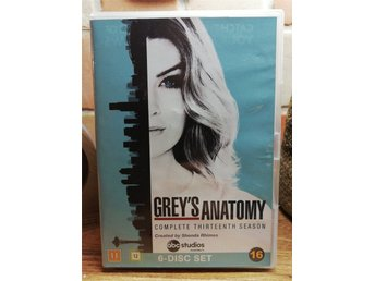 Grey's Anatomy s.13