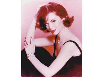 NATALIE WOOD AMERICAN ACTRESS PHOTOGRAPH 20 x 25cm FOTO