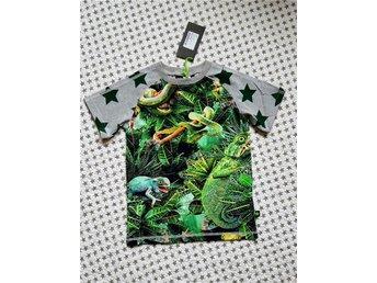 NY 116 Molo Jungle Rollo oanvänd tröja T-shirt kortärmad storlek 116 - örnsköldsvik - NY 116 Molo Jungle Rollo oanvänd tröja T-shirt kortärmad storlek 116 - örnsköldsvik