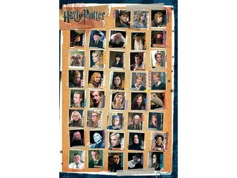 Poster (61x91 cm) - Harry Potter - Harry Potter 7 Characters (FP2513)