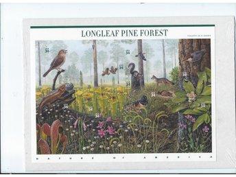 USA Longleaf Pine Forest, block,nominal $3,40, Postfriskt ,skogs djur, - österskär - USA Longleaf Pine Forest, block,nominal $3,40, Postfriskt ,skogs djur, - österskär