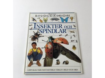 Bok, Insekter och spindlar, Dorling Kindersley, Inbunden