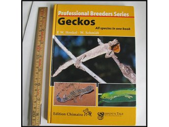 Geckos ~ All species in one book ~ Geckoe, Reptil, Ödla, Lizard, reptile