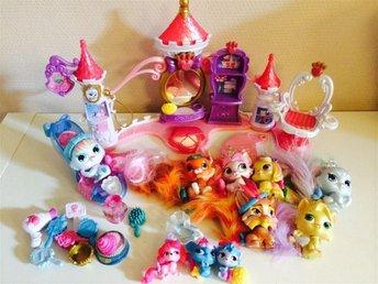 Princess palace pets paket - Boda Kyrkby - Princess palace pets paket - Boda Kyrkby