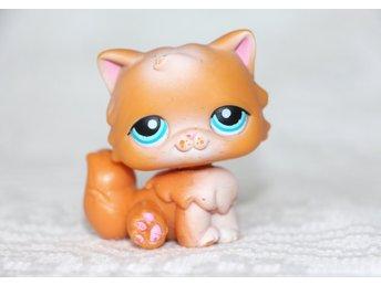Katt - Littlest Pet Shop, Petshop, Pet shops, P   (364448632