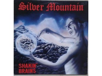 Silver Mountain   titel*  Shakin' Brains