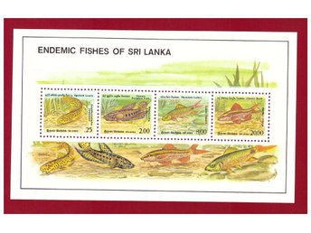 SRI LANKA. ENDEMIC FISHES OF SRI LANKA