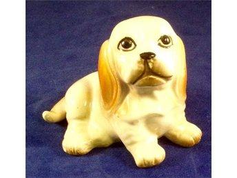 ***Hund hundar Liten söt porslins hund*** - Norrköping - ***Hund hundar Liten söt porslins hund*** - Norrköping