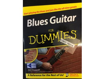 Blues Rock Guitar for dummies