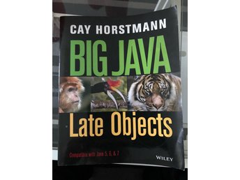 Big Java - Late Objects av Cay Horstmann