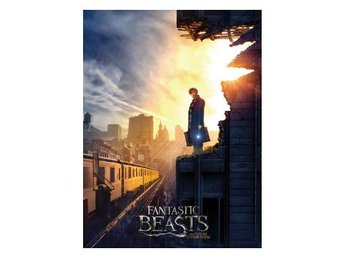 Fantastic Beasts Canvastryck Dusk