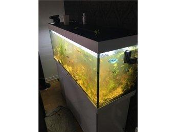 Juwel akvarium+bänk 450l - Skövde - Juwel akvarium+bänk 450l - Skövde