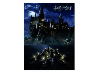 Harry Potter Canvastryck Hogwarts School 80 x 60