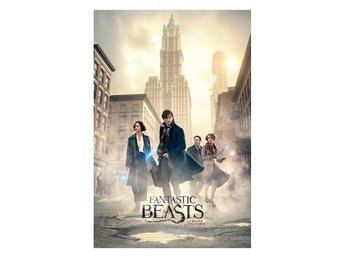 Fantastic Beasts Affisch New York